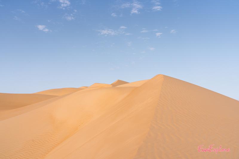Sanddüne im Morgenlicht