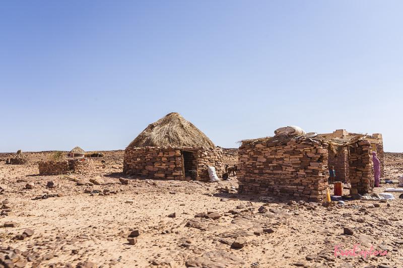 leben in der Sahara