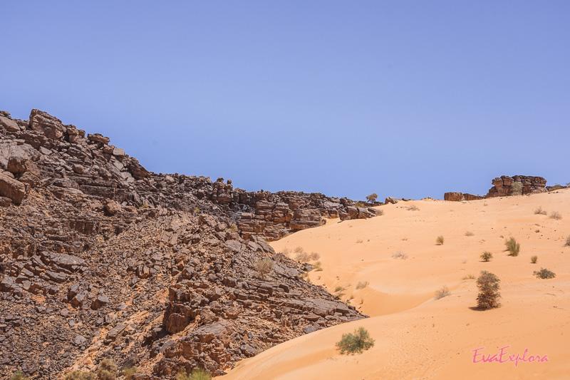 Wüstentour in Mauretanien