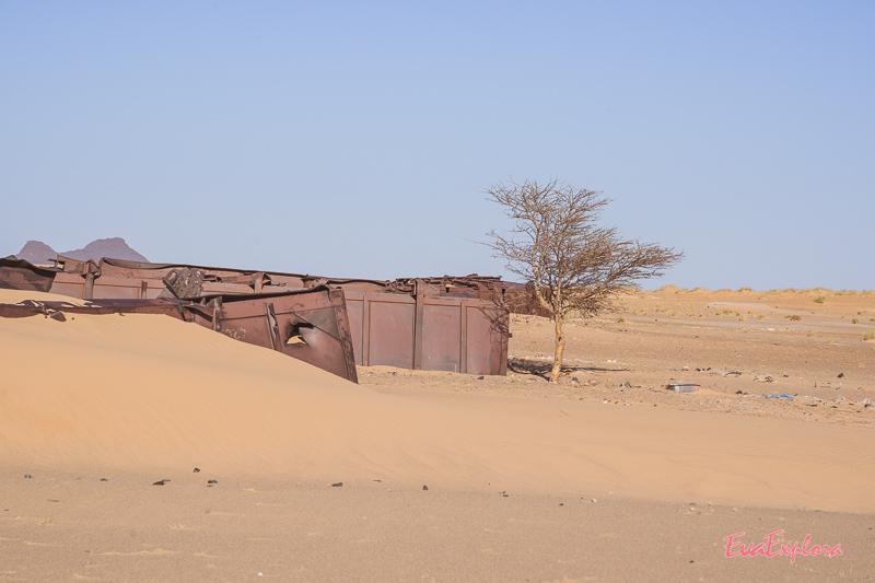 Zug im Sand