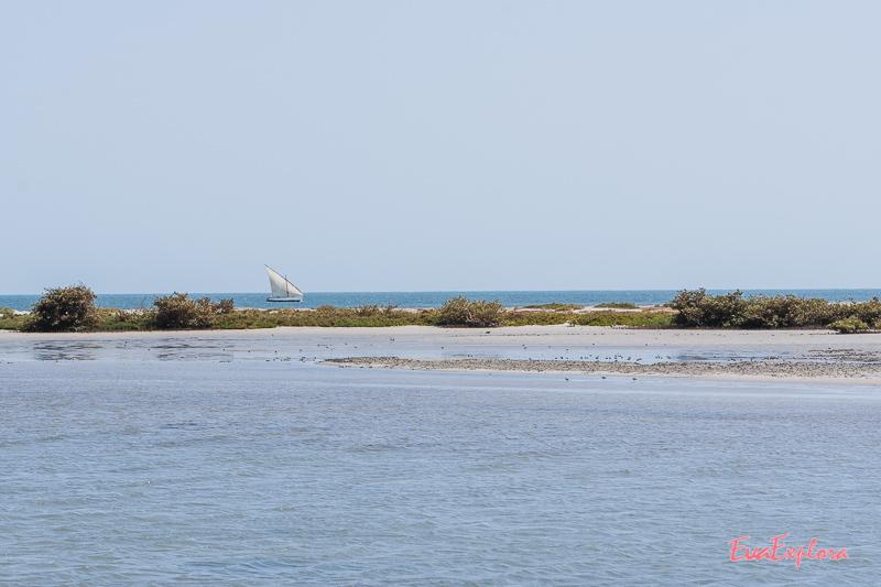 Nationalpark Mauretanien
