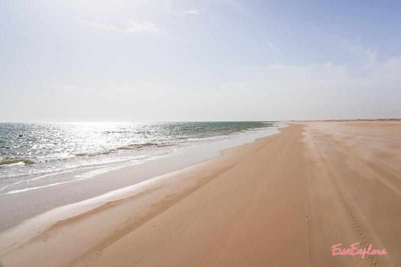 Strand Mauretanien