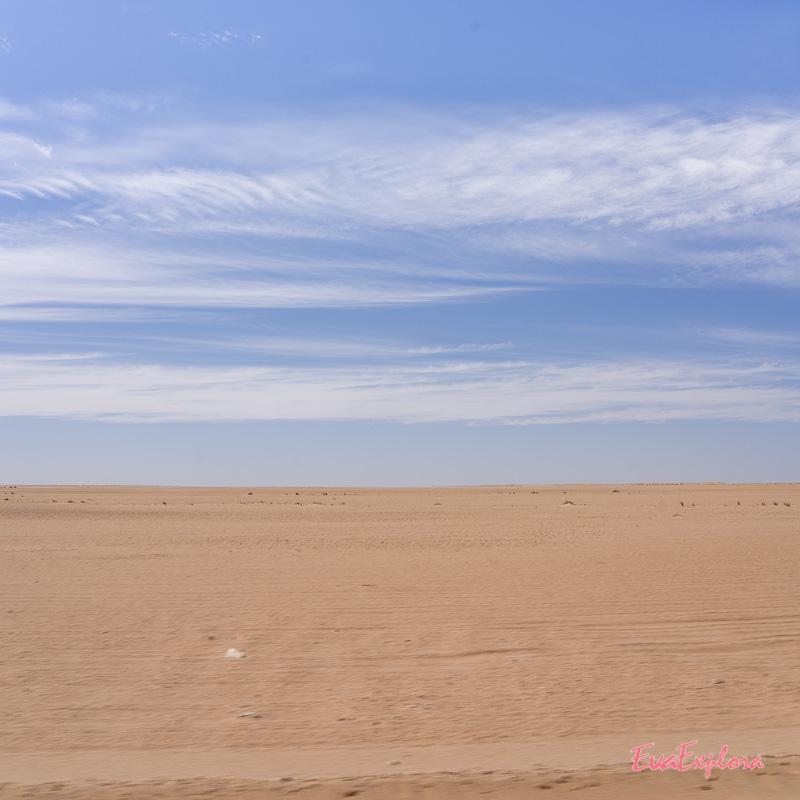 Wueste Mauretanien