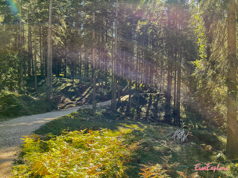 Wandern Bletterbach Canyon